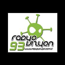 radyovizyon